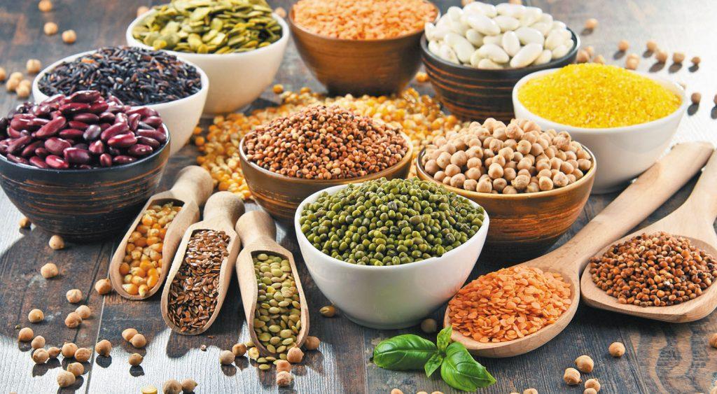 Legumes rich in protein